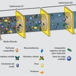 membranas Osmosis