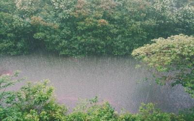 ¿Qué es la lluvia ácida y cómo afecta a tu consumo de agua?