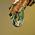 El agua y la salud