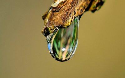 La importancia de la calidad del agua en la salud